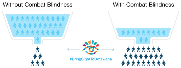 Bring Sight To Botswana infographic